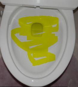トイレつまりー2.JPG
